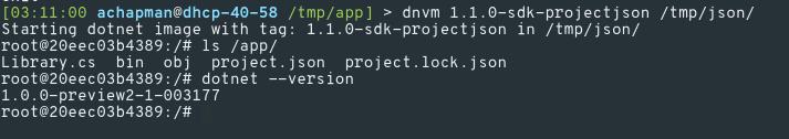 dnvm project.json